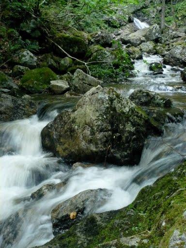 Forks Falls, Baddeck, Cape Breton