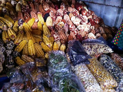 Peru is known for it's Maize (corn). colorful, chewier, sweeter