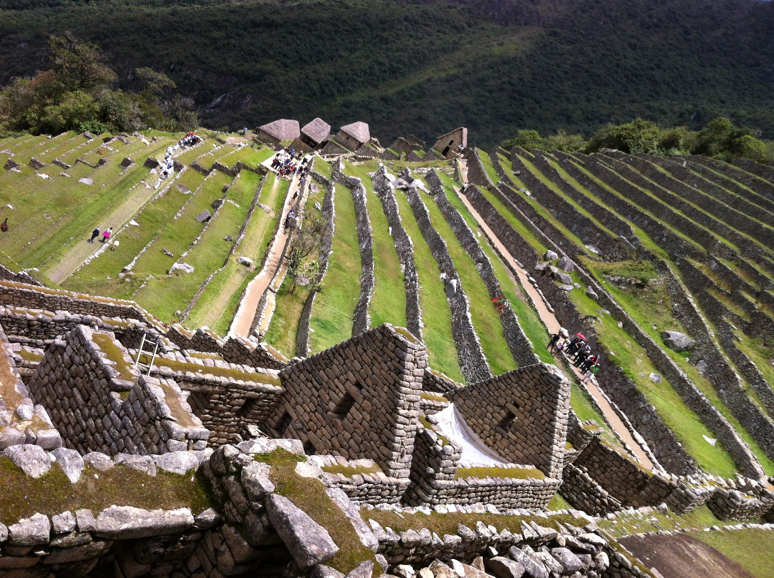 the agricultural terraces